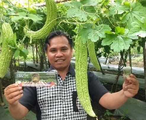 contoh penggunaan eco farming